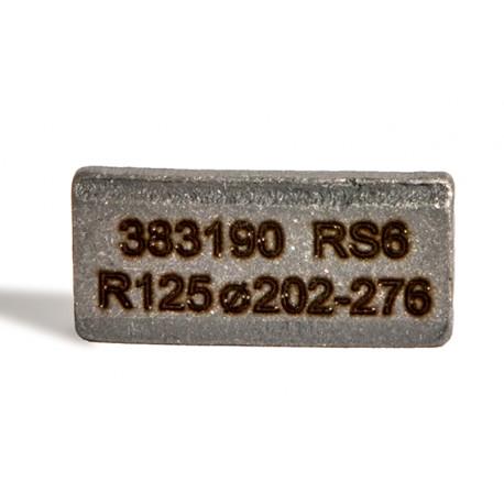 Segment R 16 RS6